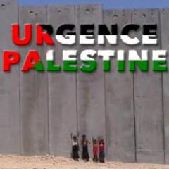 Palestine,ONU, LDH