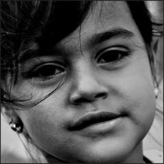 évacuations forcées, roms,rapport AEDH