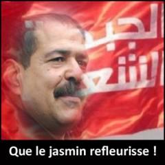 Chokri Belaïd, tunisie, jasmin