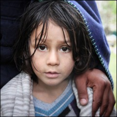 syrie,asile